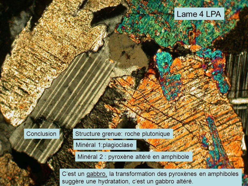 Lame 4 LPA Conclusion Structure grenue: roche plutonique