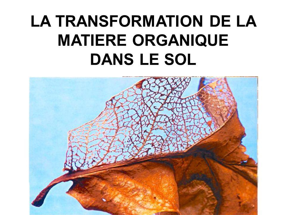 LA TRANSFORMATION DE LA MATIERE ORGANIQUE DANS LE SOL