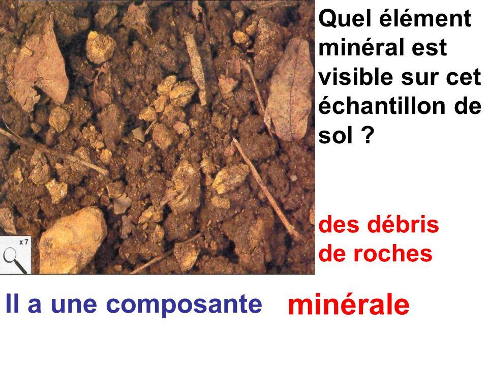 minérale Il a une composante