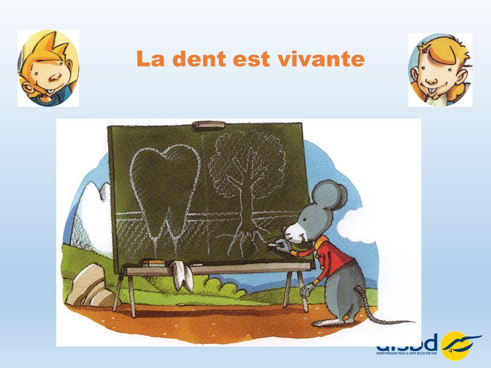 Union francaise pour la sant bucco dentaire ppt video - Cuisine vivante pour une sante optimale ...