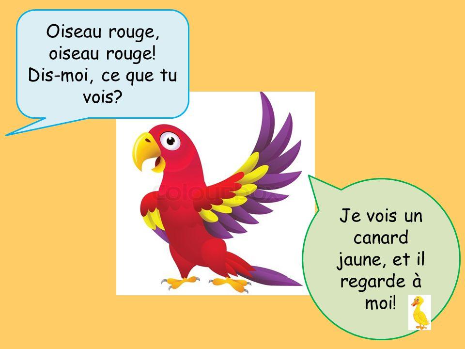 Oiseau rouge, oiseau rouge! Dis-moi, ce que tu vois