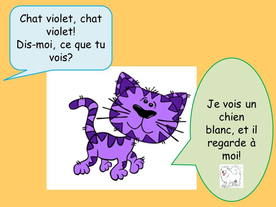 Chat violet, chat violet! Dis-moi, ce que tu vois