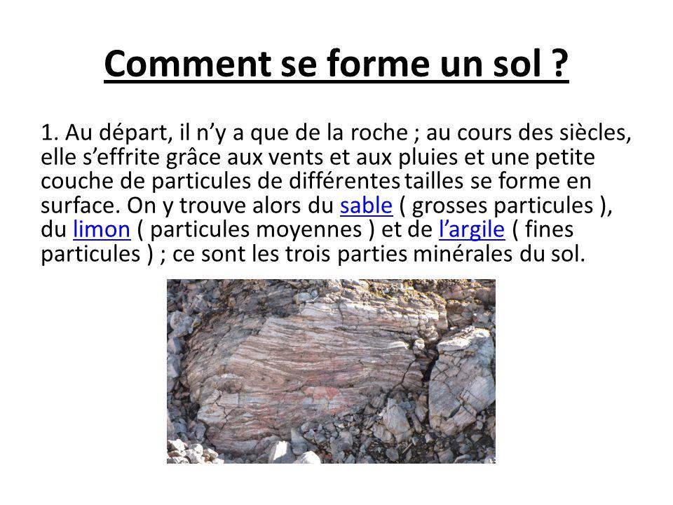 Comment se forme un sol
