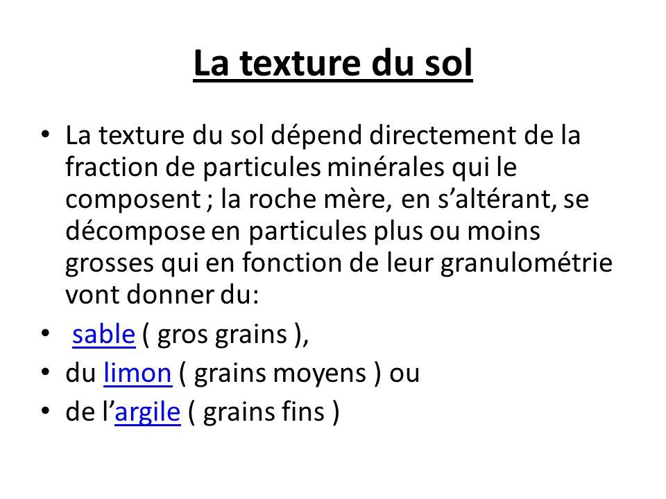 La texture du sol