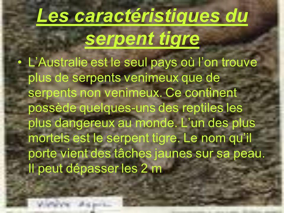 Le serpent tigre ppt video online t l charger - Quel est le nom le plus porte au monde ...