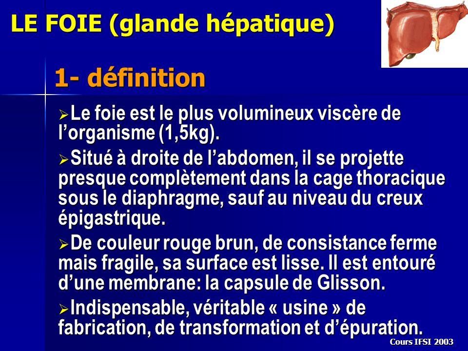 1- définition LE FOIE (glande hépatique)