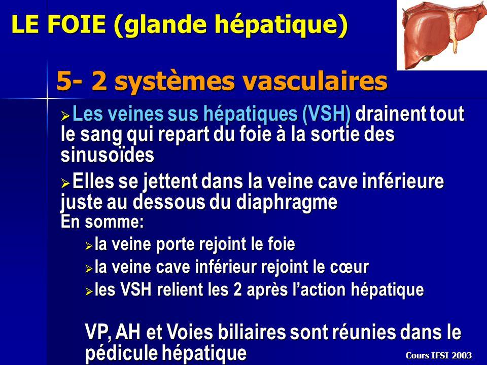 5- 2 systèmes vasculaires