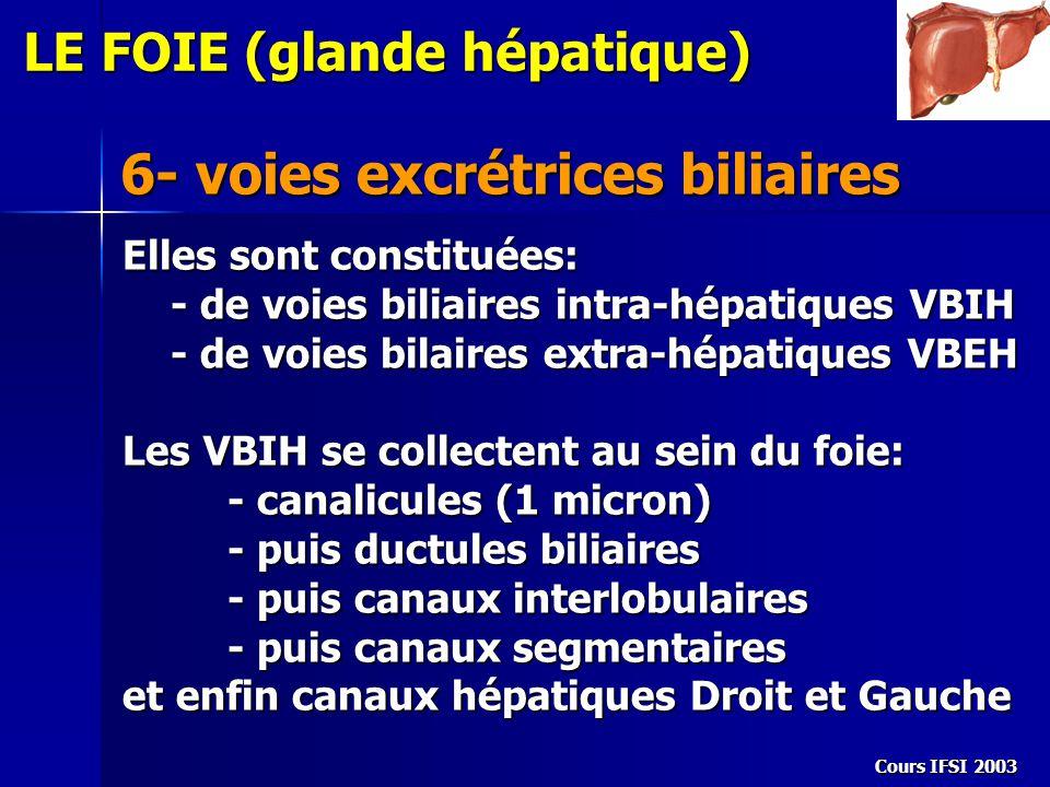 6- voies excrétrices biliaires