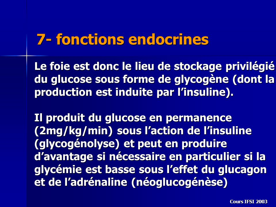 7- fonctions endocrines