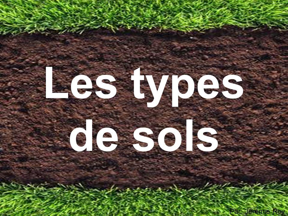 Les types de sols Par: Jérémie Roy