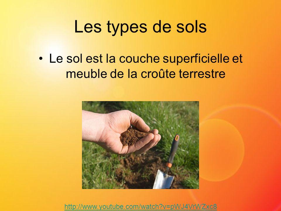 Le sol est la couche superficielle et meuble de la croûte terrestre