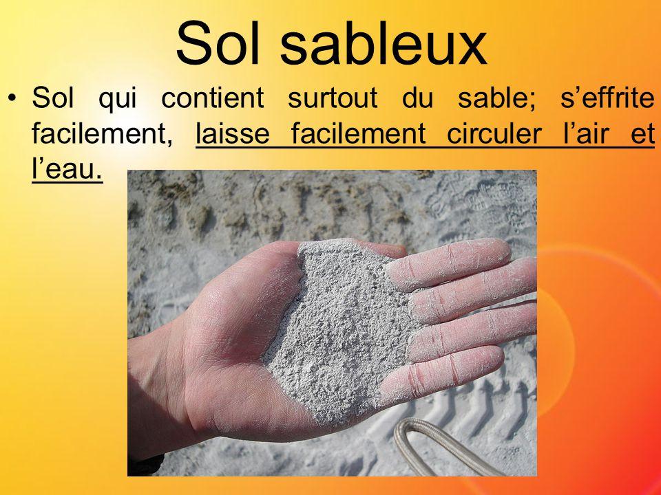 Sol sableux Sol qui contient surtout du sable; s'effrite facilement, laisse facilement circuler l'air et l'eau.