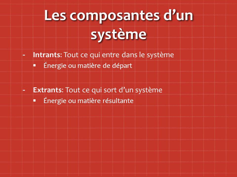Les composantes d'un système
