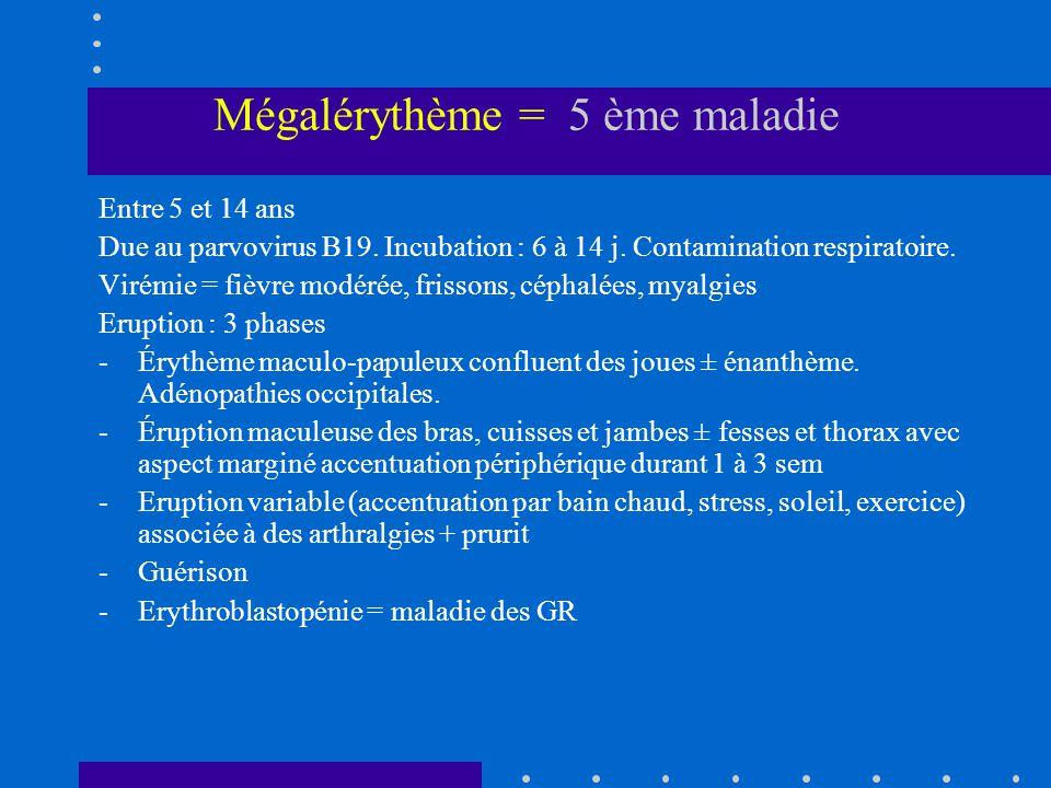 Mégalérythème = 5 ème maladie