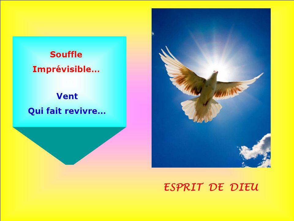 Souffle Imprévisible… Vent Qui fait revivre… ESPRIT DE DIEU