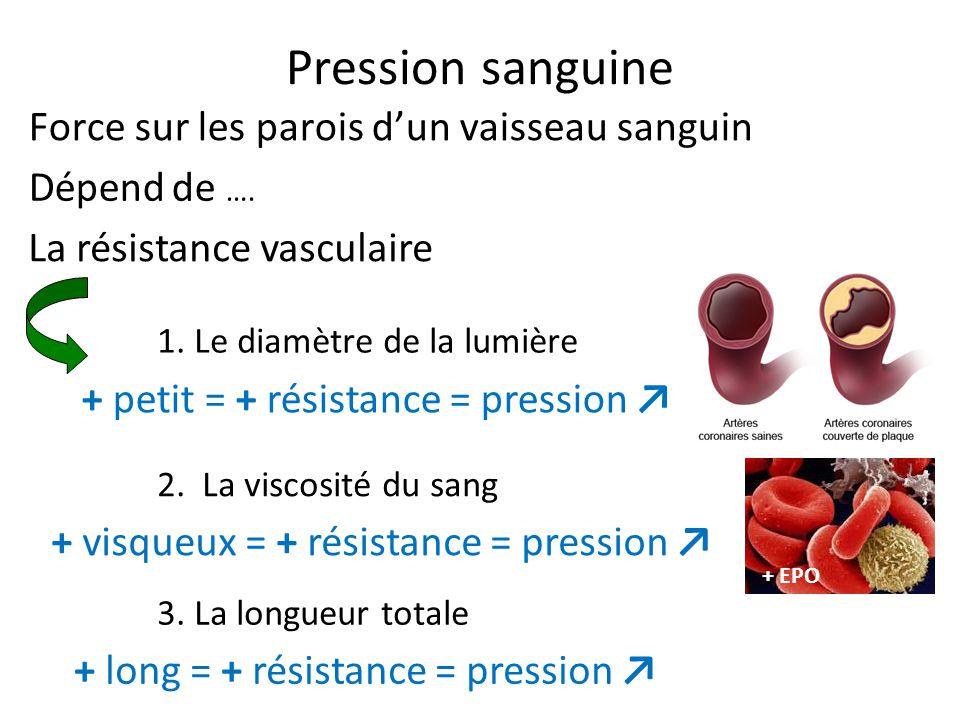 Pression sanguine Force sur les parois d'un vaisseau sanguin