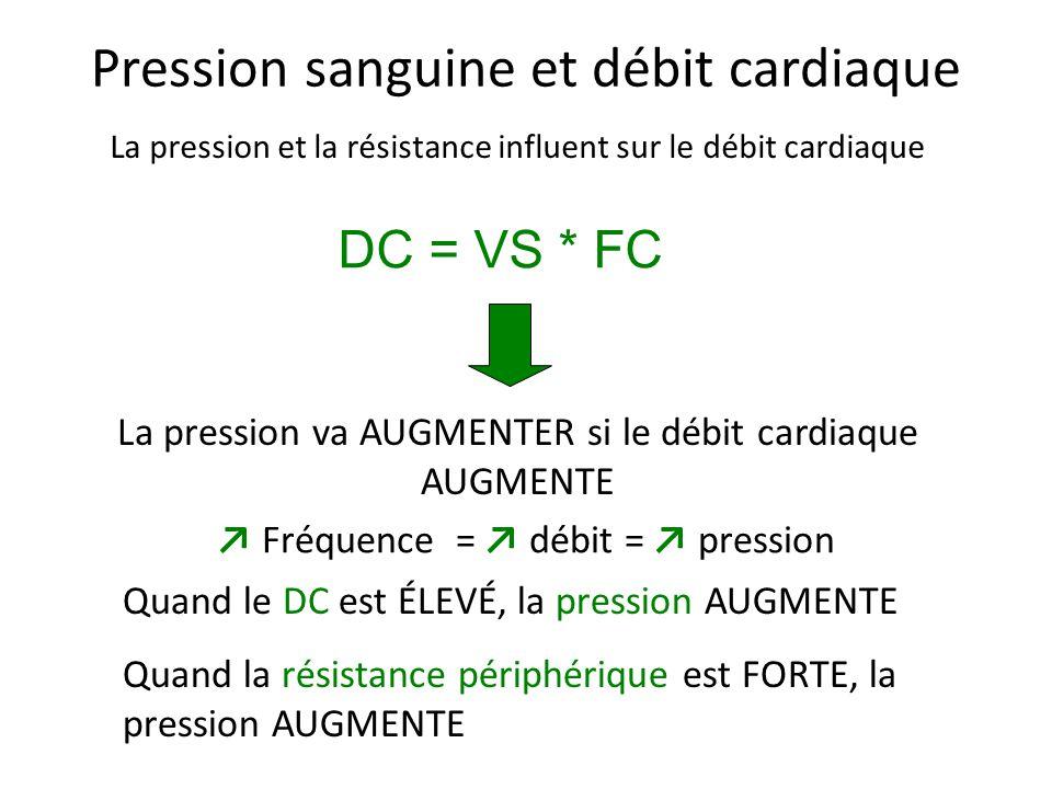 Pression sanguine et débit cardiaque