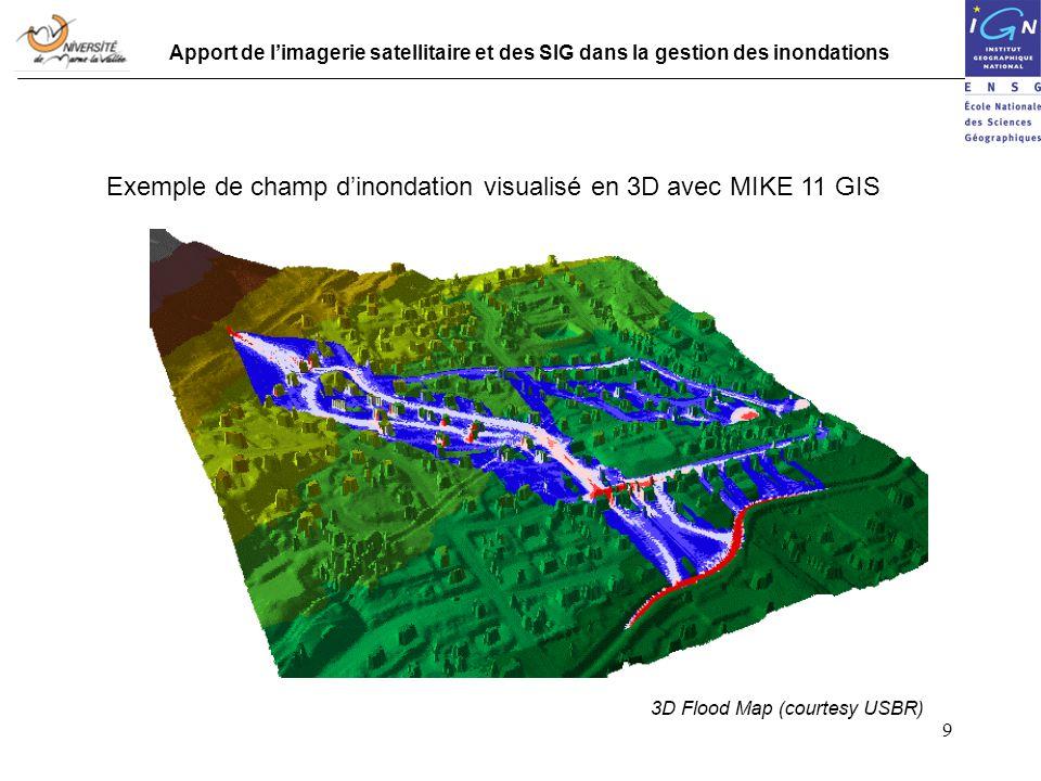 Exemple de champ d'inondation visualisé en 3D avec MIKE 11 GIS