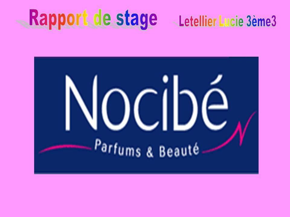 Rapport de stage Letellier Lucie 3ème3