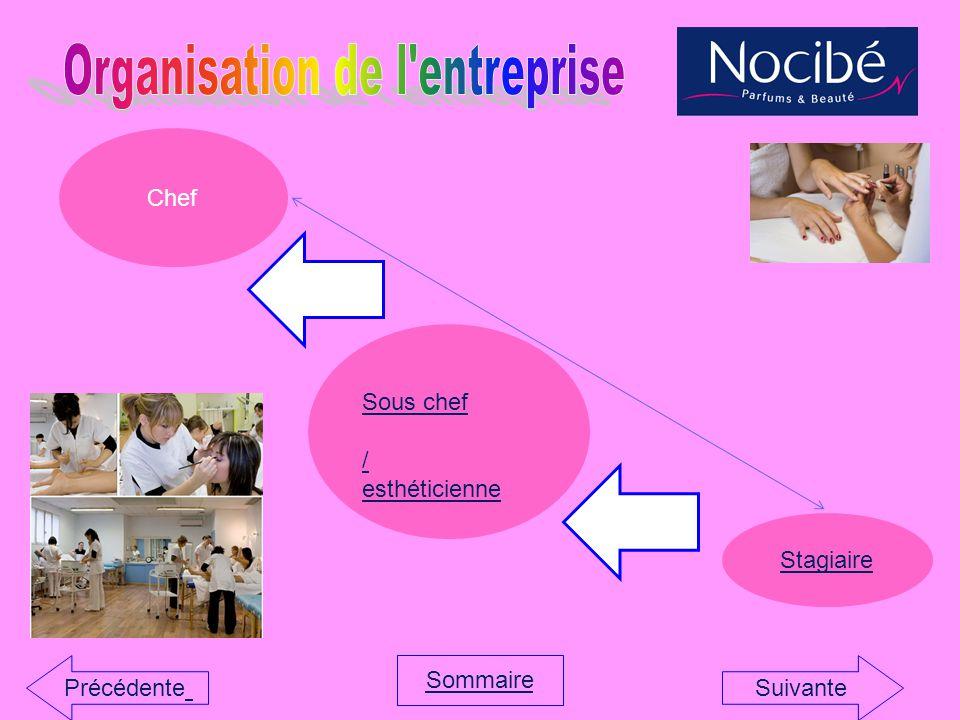 Organisation de l entreprise