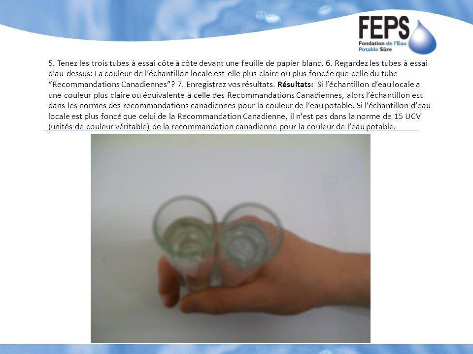5. Tenez les trois tubes à essai côte à côte devant une feuille de papier blanc.