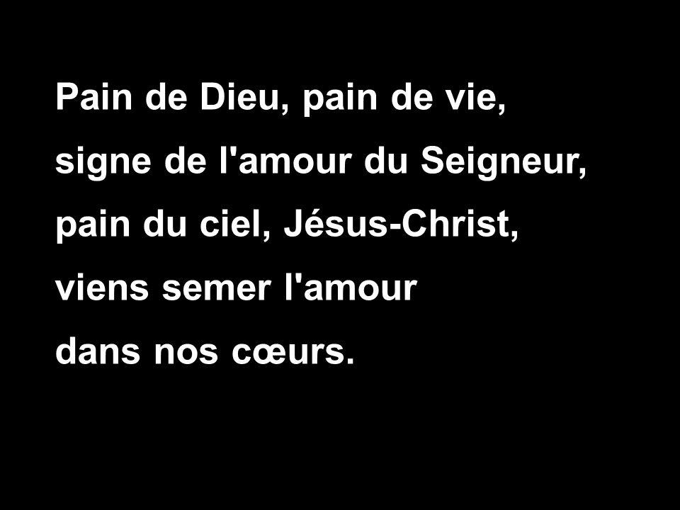 6 novembre me dimanche soyons vigilants ppt t l charger for Dans nos coeurs 53