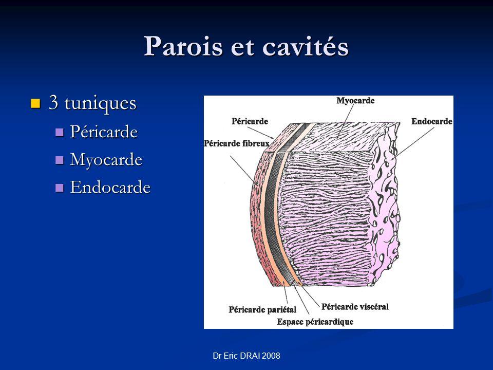 Parois et cavités 3 tuniques Péricarde Myocarde Endocarde