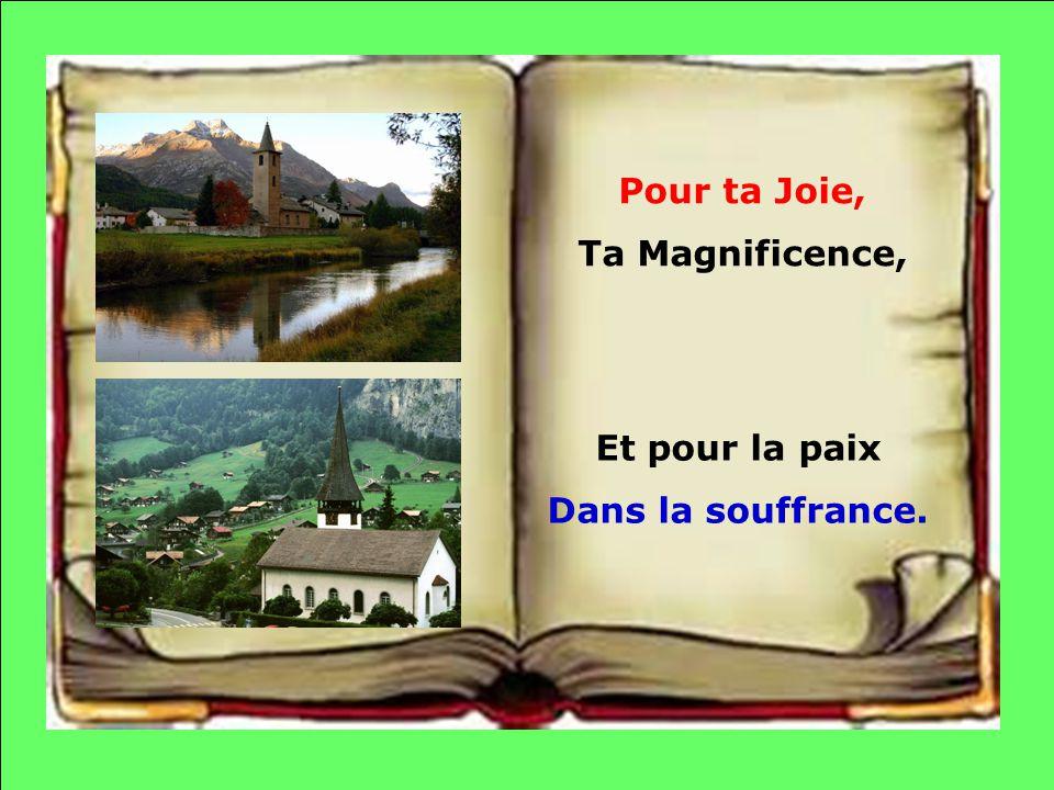 Pour ta Joie, Ta Magnificence, Et pour la paix Dans la souffrance.