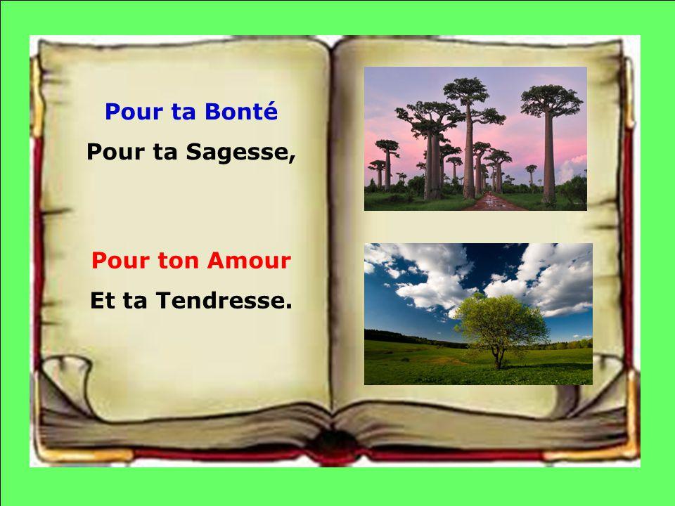 Pour ta Bonté Pour ta Sagesse, Pour ton Amour Et ta Tendresse.