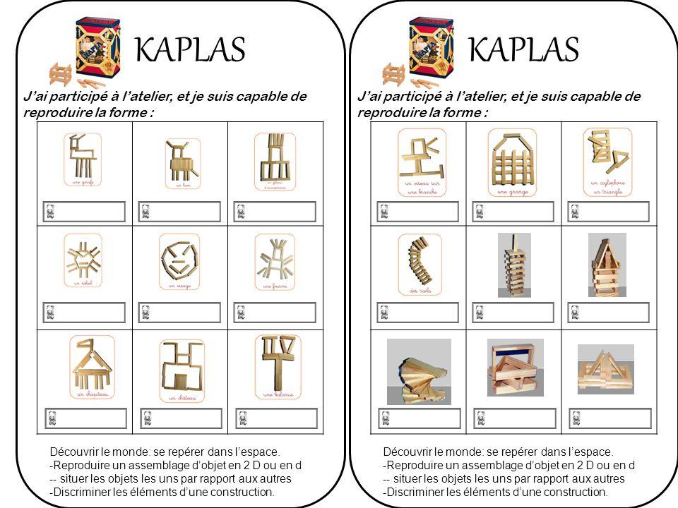 KAPLAS KAPLAS. J'ai participé à l'atelier, et je suis capable de reproduire la forme :