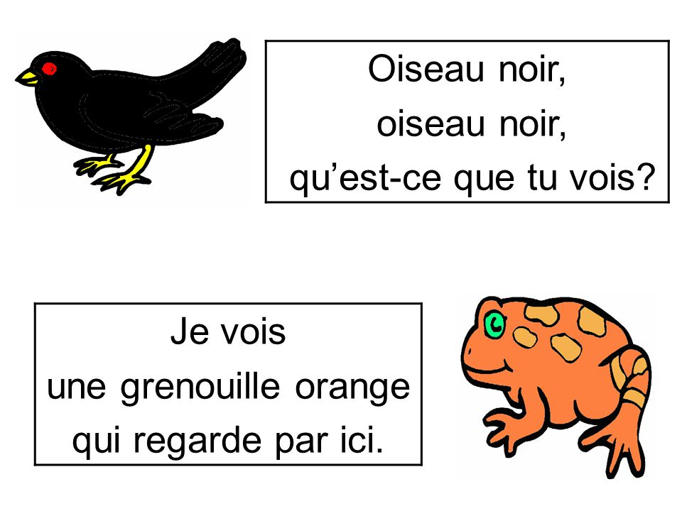 Oiseau noir, oiseau noir, qu'est-ce que tu vois Je vois une grenouille orange qui regarde par ici.