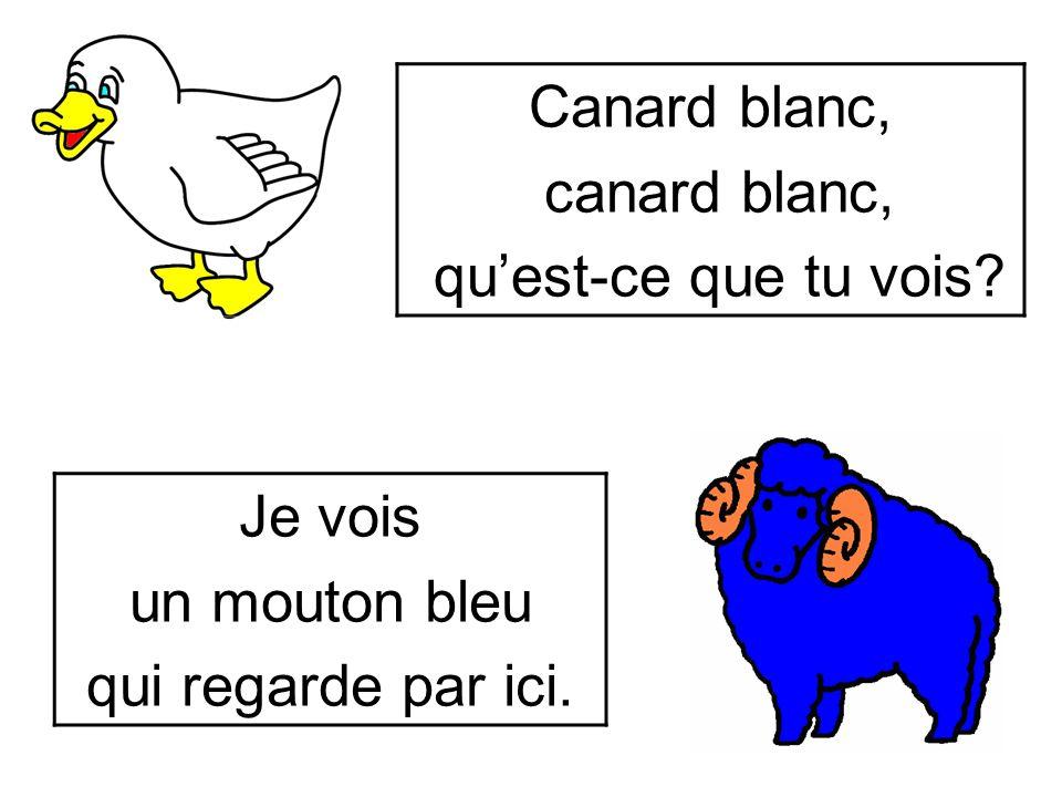 Canard blanc, canard blanc, qu'est-ce que tu vois Je vois un mouton bleu qui regarde par ici.