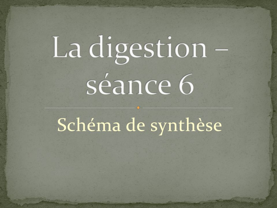 La digestion – séance 6 Schéma de synthèse