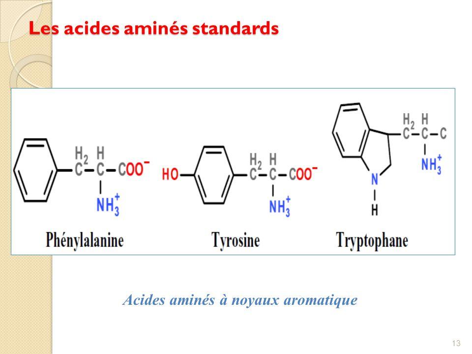 Les acides aminés standards