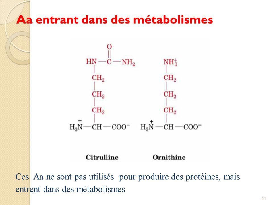 Aa entrant dans des métabolismes