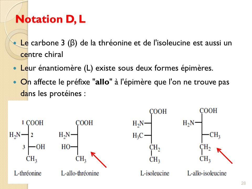 Notation D, L Le carbone 3 (β) de la thréonine et de l isoleucine est aussi un centre chiral.