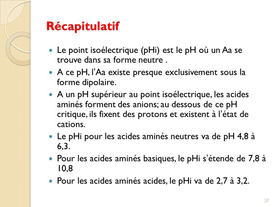 Récapitulatif Le point isoélectrique (pHi) est le pH où un Aa se trouve dans sa forme neutre .