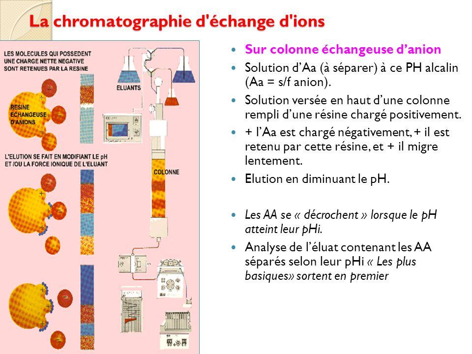 La chromatographie d échange d ions