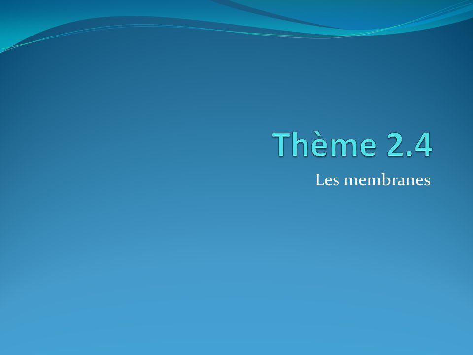 Thème 2.4 Les membranes