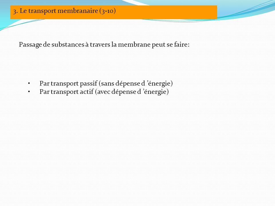 3. Le transport membranaire (3-10)