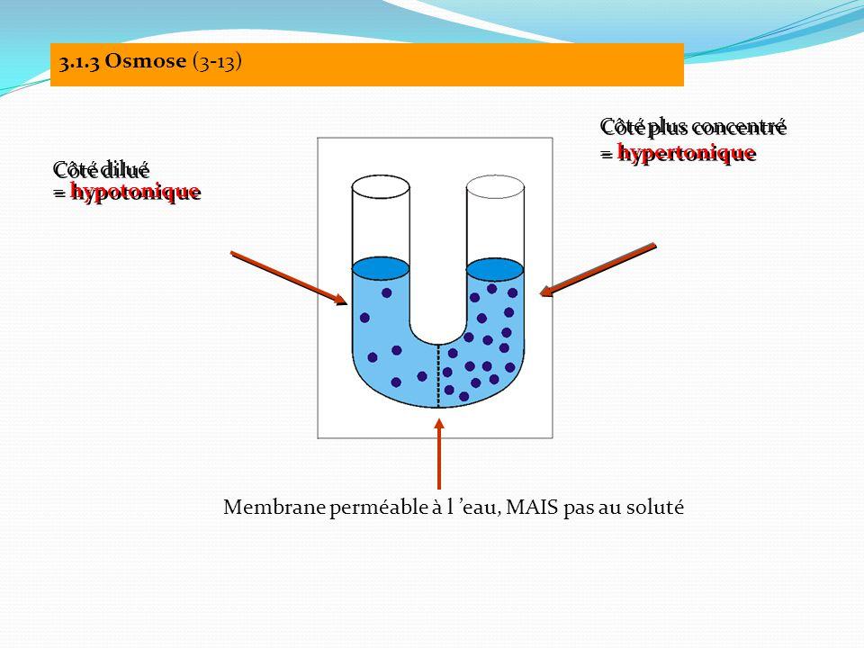 Membrane perméable à l 'eau, MAIS pas au soluté