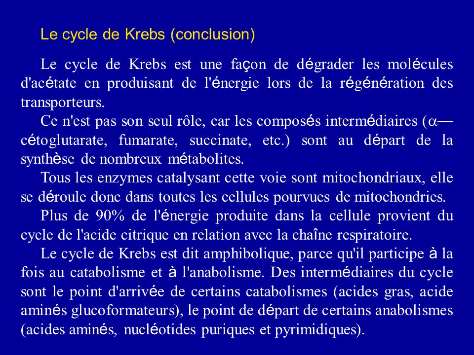 Le cycle de Krebs (conclusion)