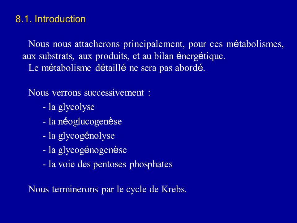 8.1. Introduction Nous nous attacherons principalement, pour ces métabolismes, aux substrats, aux produits, et au bilan énergétique.