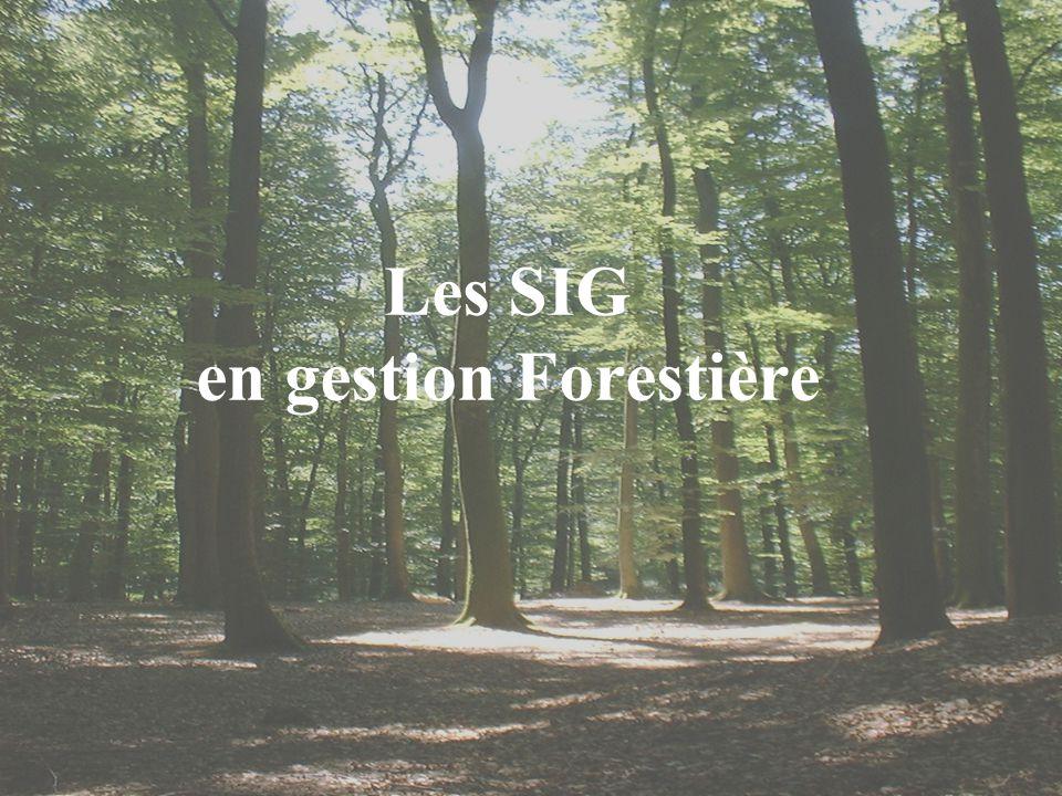 Les SIG en gestion Forestière
