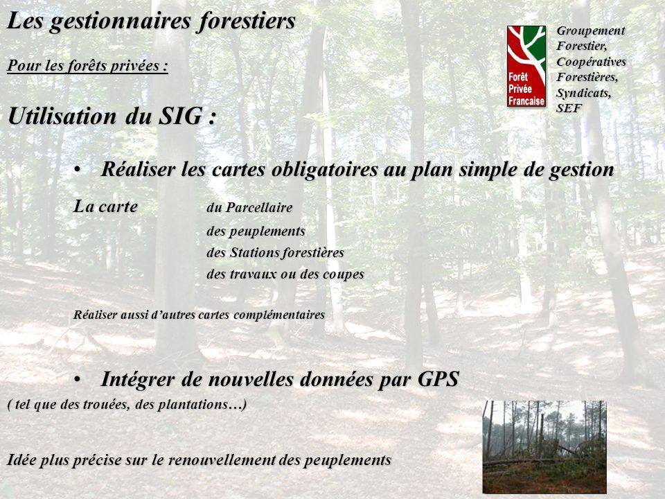 Les gestionnaires forestiers