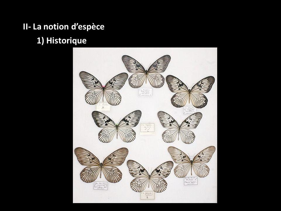 II- La notion d'espèce 1) Historique