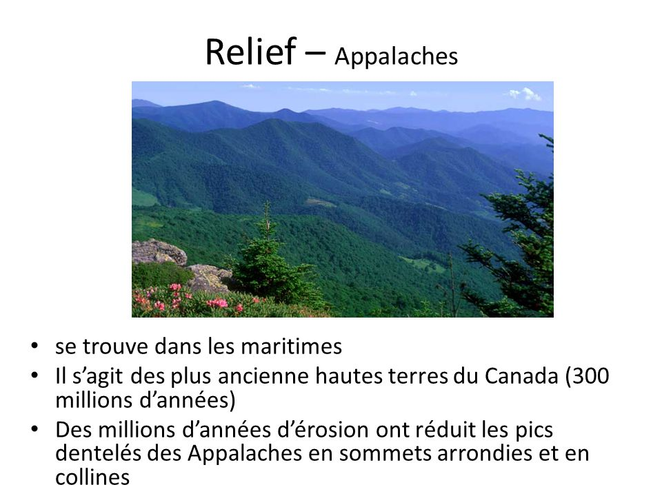 Relief – Appalaches se trouve dans les maritimes