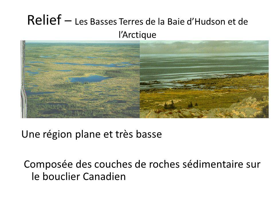 Relief – Les Basses Terres de la Baie d'Hudson et de l'Arctique