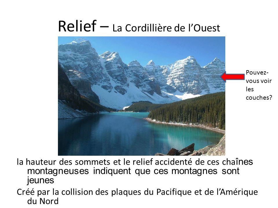 Relief – La Cordillière de l'Ouest