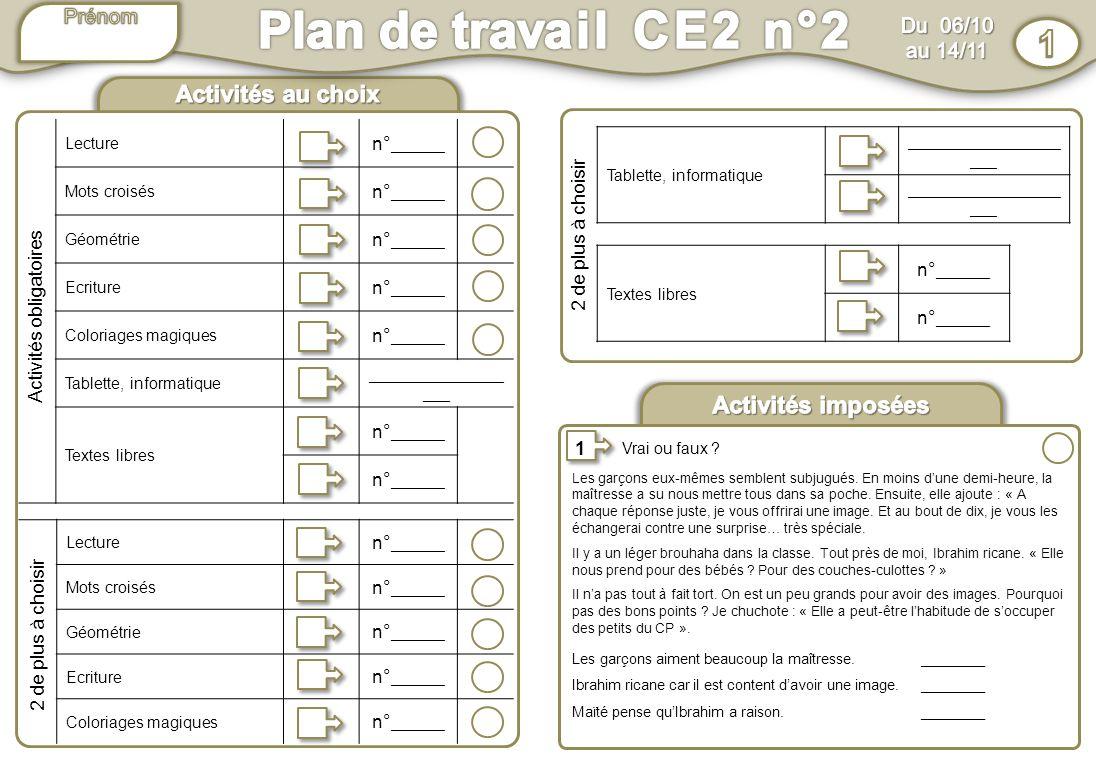 Hervorragend Plan de travail CE2 n°2 1 Activités au choix Activités imposées  UJ11